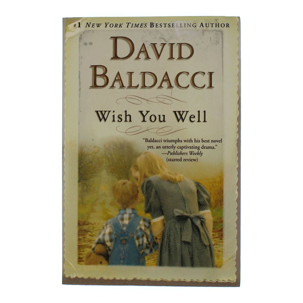 critical essay on wish you well by david baldacci