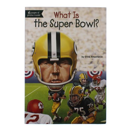 History of the super bowl essay